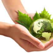 TES1 ECO THEME 2 ECONOMIE DU DEVELOPPEMENT DURABLE
