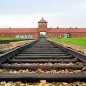 Témoignages des élèves à Auschwitz