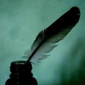 Les plumes de Duruy 2011