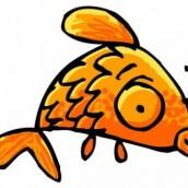 C'était un poisson d'avril !
