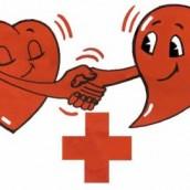 Actualisation don du sang le 08/10 et 2nde G