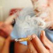 Le cannabis est une drogue dure à combattre