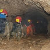 Enseignements d'exploration 2013/2014