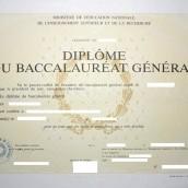 Retrait des diplômes 2013 (Bac + BTS)