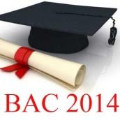 BAC 2014  : Bon cru sauf en TES1