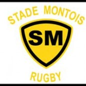 Billets Stade Montois vs Albi