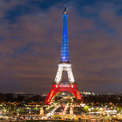 Les SI : direction la finale à Paris