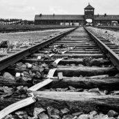 Reportage MDM/Faustine Ferrer Auschwitz